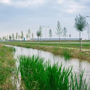 PARK 15  Oosterhout