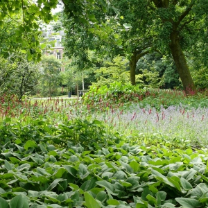 Oosterpark-3