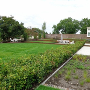 Tuinrenovatie-Rumpt-2-1